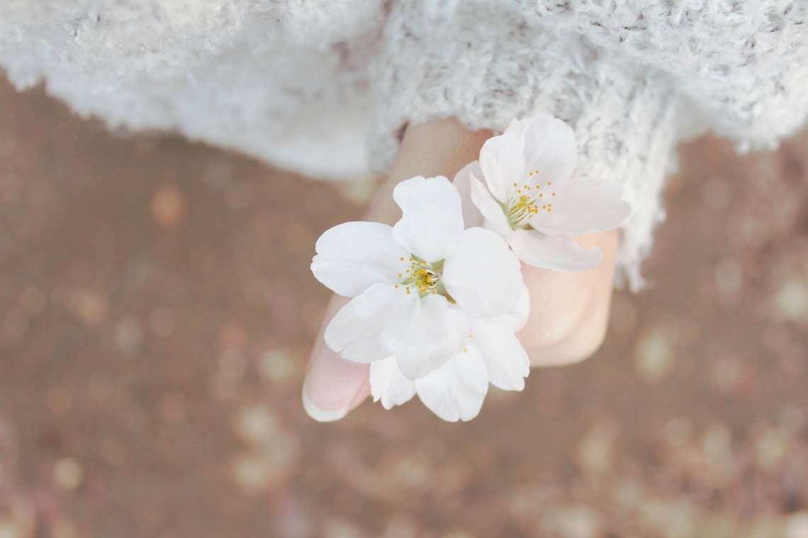 spring-632098